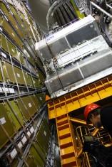 CERN, Large Hadron Collider experiment