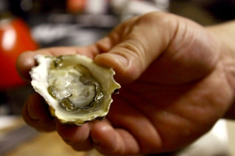 Freshly shucked oyster in hand